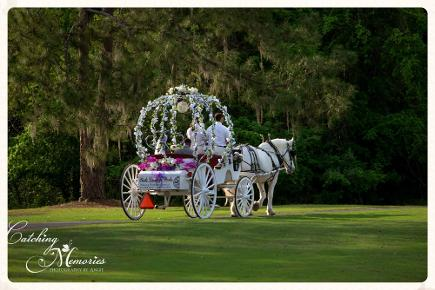 Fairytale Cinderella carriage wedding in Gainesville, FL
