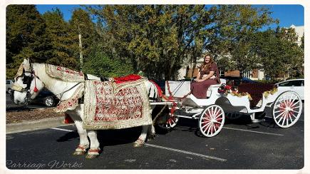 Baraat horse carriage or baghi at a baraat in Gainesville, Florida.