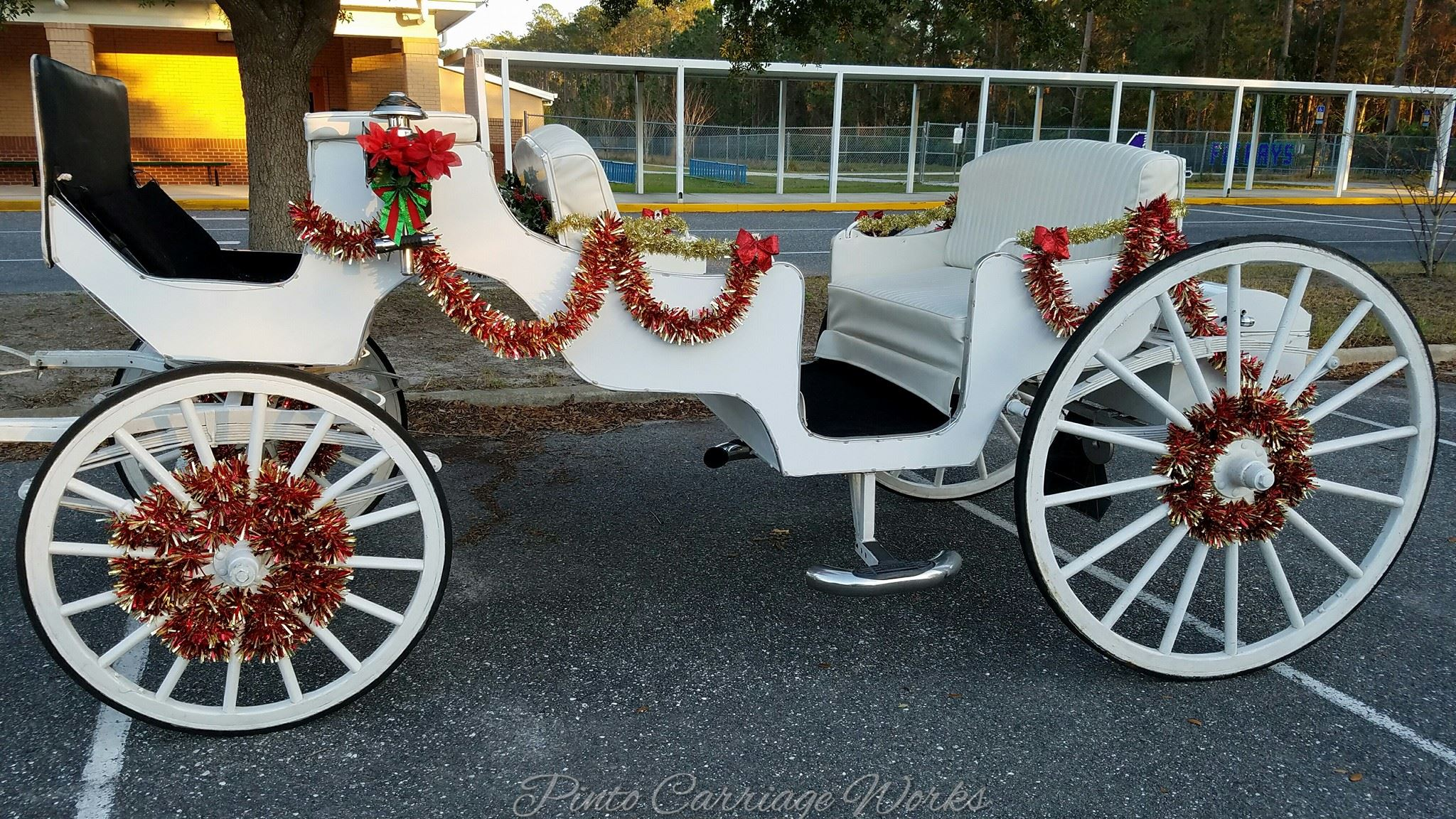 Cinderella Coach Classic Horse Carriage Available For Weddings More In Jacksonville Gainesville Fl