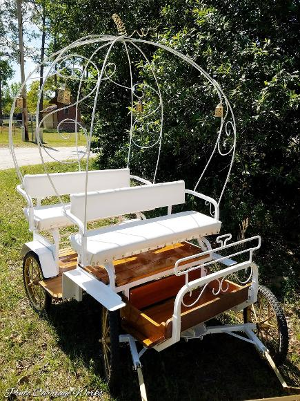 Our kids' Cinderella pony carriage ready for your child's birthday party in Fleming Island, FL.