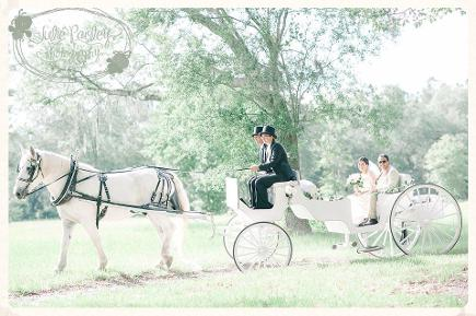 Beautiful country carriage wedding in Lake City, FL.
