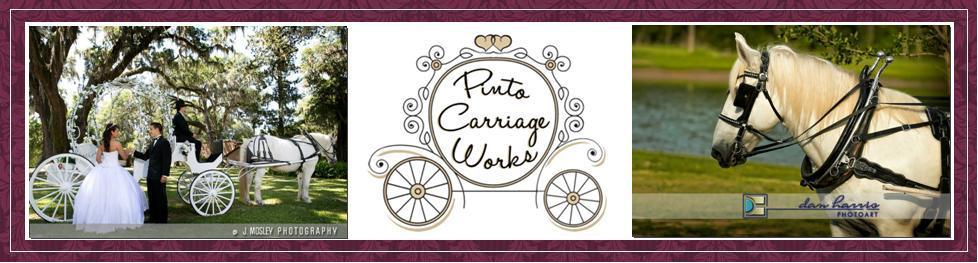 wedding horse carriage rental jacksonville, fl