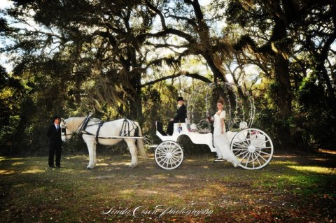Beautiful carriage photo from a photo shoot done at the Ribault Club. Photo Courtesy of Linda Olsen.