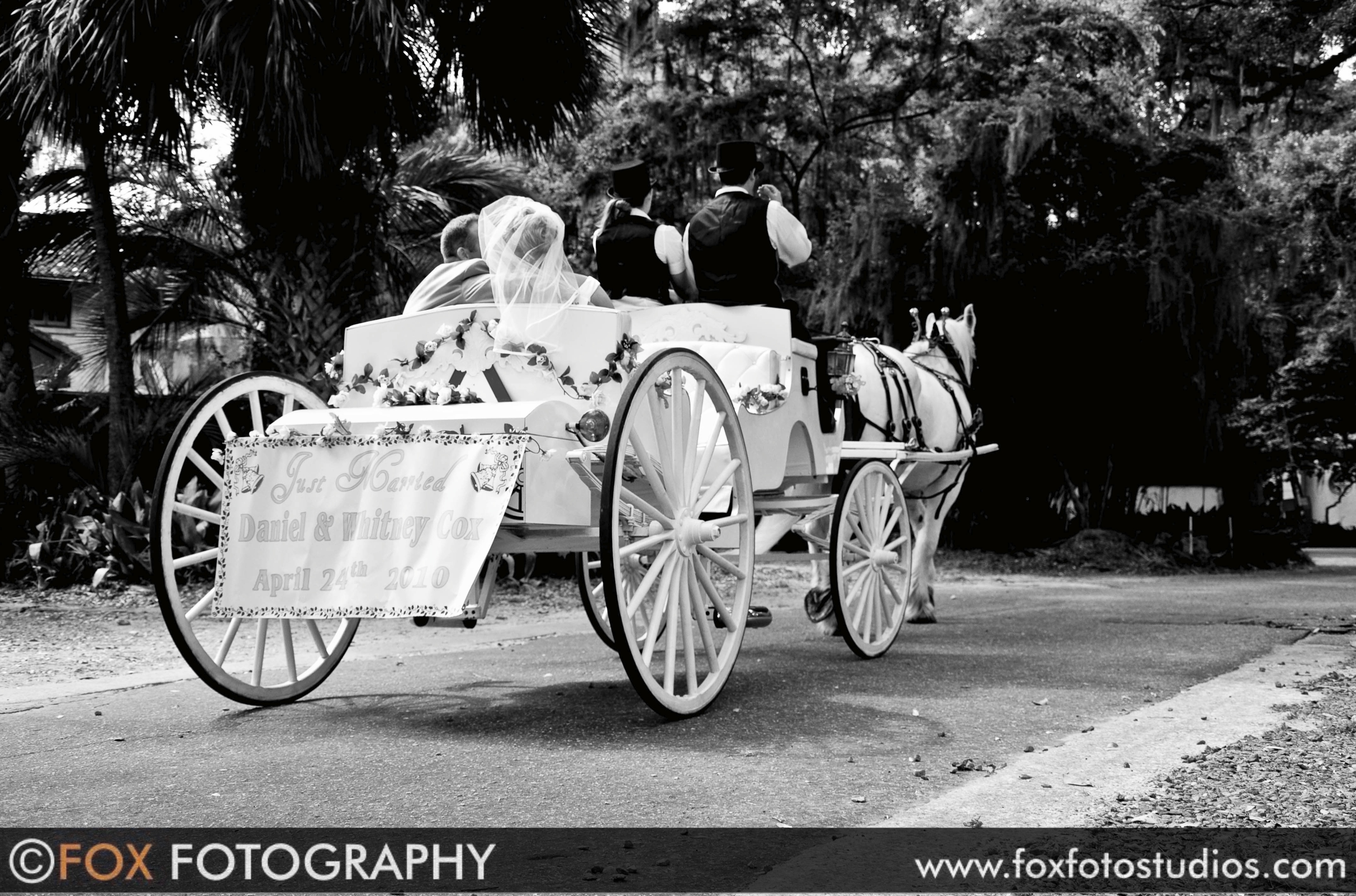 An Orange Park, FL wedding having a horse carriage ride as the beginning of their happily ever after. Wedding Send off in Jacksonville, Florida
