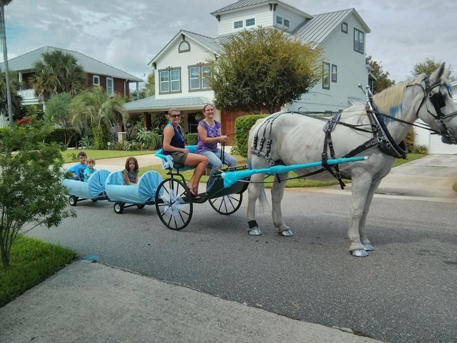 pony train for birthday parties jacksonville beach, florida