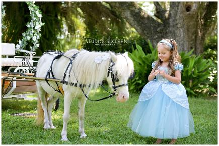 Kids Cinderella Pony Carriage available for princesses and princes' birthday parties in Middleburg, FL